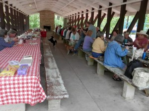 Over 40 hungry picnickers